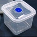 Plastic Food Container B